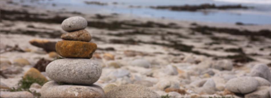 Blog Annelies | Zachte steen - Tactieken vanuit Defensie toegepast op leiderschap en teamwork in de zorg